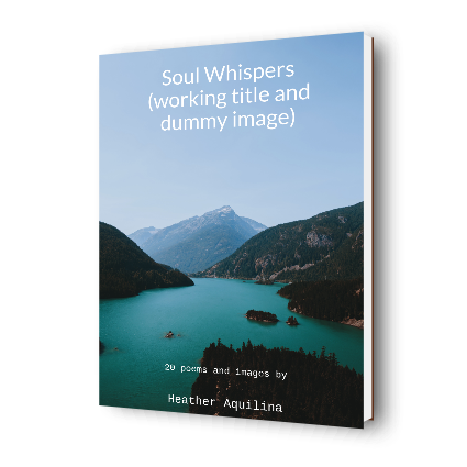 Mockup of paperback book of poetry