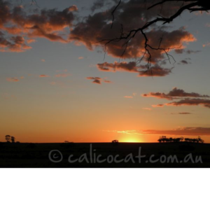 Photo of an Australian sunset