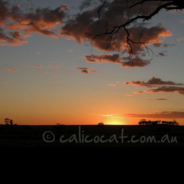 Photo of an Australian sunset